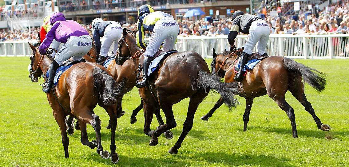 Image for AMADEUS WINS STRATFORD RACECOURSE CONTRACT
